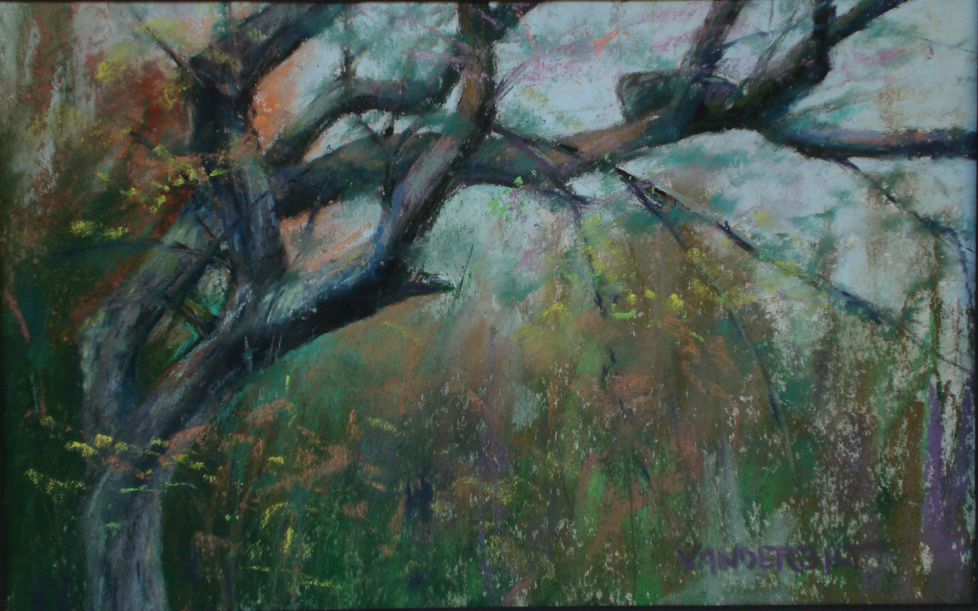 Rachel's Tree